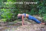 Grounded Roots Yoga